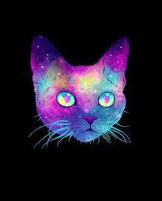 cat, cute, galaxy, meow, vintage