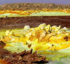 Inhospitable Danakil Depression hosts extreme life 4/28/16 The area is below sea level, with near-boiling water bubbling up fr Hydrothermal system at the Danakil Depression.: Felipe Gomez/Europlanet 2020 RI