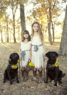 A beautiful shot of the flower girls with two stunning black labs