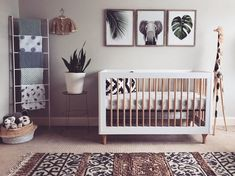 Often times, we see that baby nursery decorating ideas have become a source of big trouble to parents. Parents want … decor 48 Creative Baby Nursery Decor Ideas - LUVLYDECORA Safari Nursery, Baby Nursery Decor, Baby Decor, Girl Nursery, Animal Theme Nursery, Babies Nursery, Jungle Safari, Nursery Prints, Unisex Nursery Ideas