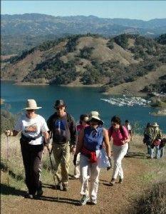 Exploring the Wonders of Dry Creek Valley