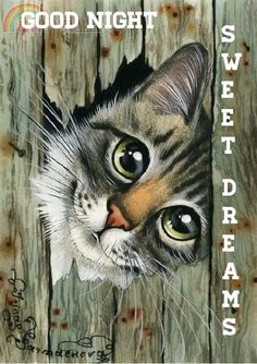 Es besteht eine gute Chance, dass Sie diese Trance-Musik Like cats? Like art? There is a good chance that you will enjoy this trance music … – Trance Musik, Animal Paintings, Animal Drawings, Pencil Drawings, Art And Illustration, Illustrations, Cat Drawing, Crazy Cats, Rock Art