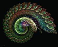 Peacock's Pride by Shadoweddancer on DeviantArt