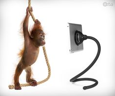Monkey with an iPad and a TabletTail: Monkey Kit