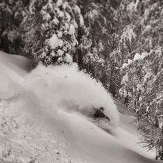 Winter is back. Spray all day. Best Powder, Sprays, Christian, Adventure, Winter, Instagram Posts, Outdoor, Fairy Tales, Adventure Books