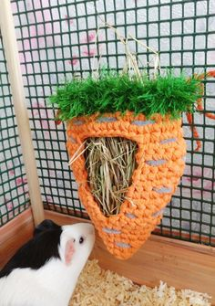 made accessories ideas Guinea pig carrot hay bag. Guinea pig unique for cage accessories. Diy Guinea Pig Toys, Diy Guinea Pig Cage, Guinea Pig House, Pet Guinea Pigs, Guinea Pig Care, Guinea Pig Costumes, Guinea Pig Food, Pet Bunny Rabbits, Pet Rabbit