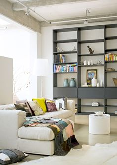Grey shelves w/ white background. Just getting color ideas for sprucing up an old bookcase.