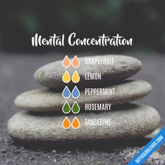 Mental Concentration - Essential Oil Diffuser Blend