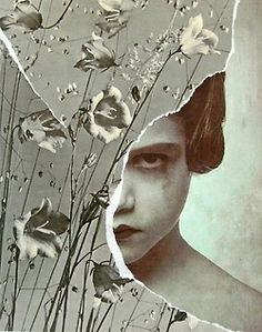 'Bellflower' collage by Waldemar Strempler Collage Foto, Art Du Collage, Mixed Media Collage, Dream Collage, Collages, Photocollage, Gcse Art, Illustrations, Altered Art