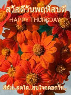 Good Day, Good Morning, Happy Thursday, Nice, Buen Dia, Buen Dia, Hapy Day, Bonjour, Nice France