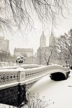 10: An image that represents your favorite Christmas carol: Winter Wonderland! 10 beautiful photos of NYC covered in snow.