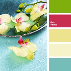 blue color, color solution for summer 2016, colors of spring, colors of spring 2016, green color, pale blue color, pale pink color, pink color