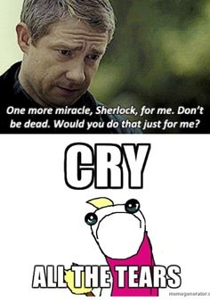 I got so sad and mad at Sherlock for not coming back for two years! Only Sherlock fans understand my pain! Sherlock Fandom, Sherlock Holmes, Watson Sherlock, Jim Moriarty, Sherlock Quotes, Sherlock John, Benedict And Martin, Mrs Hudson, Vatican Cameos