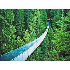 【misa_z8】さんのInstagramをピンしています。 《カナダのブリティッシュコロンビア州、ノースバンクーバー地区のキャピラノ川に架かる、キャピラノ吊り橋。橋の長さは140メートルあり、年間80万人を超える観光客が訪れる。 #橋 #川 #森 #森林 #吊り橋 #空気が綺麗 #140m #長い # #キャピラノ #キャピラノ吊り橋 #capilano #capilanosuspensionbridge #世界の絶景 #死ぬまでに行きたい #一度でいいから行ってみたい #写真好きな人と繋がりたい》