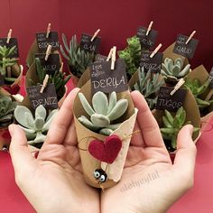 """""""Avuç içi kadar mutluluk"""" yeter dedi sevgililer g… """"Happiness as palms,"""" he said @ tugcerdogangdr❤️❤️ Valentine's Day, what about the gift of water in love with you? Diy Wedding, Wedding Gifts, Plant Wedding Favors, Succulent Favors, Cactus Y Suculentas, Mothers Day Crafts, Flower Pots, Flowers, Diy Gifts"""