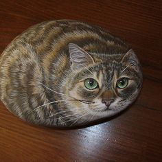 Gatto #arte #art #gatto #cat #sassodipinto #paintedstones #realismo #realism #painting #colori #color #beautiful #masterpiece