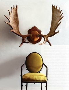 so in love with antlers right now. ideal bedroom wall decor gold chair.