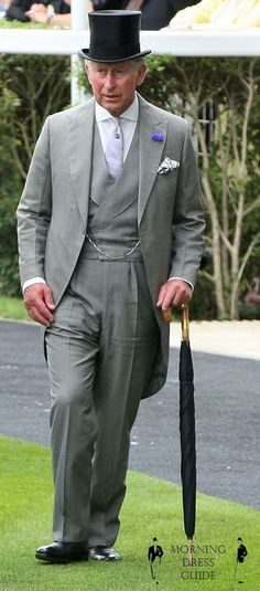 Not that I particularly want to marry Prince Charles, but lovely morning suit!