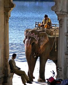 Riding an elephant is on my list to do in the next year - Amber Hamilton scene in lake's Gate, Udaipur, Rajasthan, India