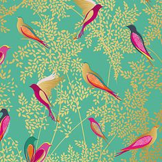 Buy Sara Miller Bird Wrapping Paper, 3m Online at johnlewis.com