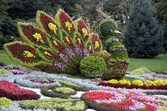 kwind-kijev.blog.hu Make Beauty, Cata, Flower Art, Stepping Stones, Outdoor Decor, Nature, Plants, Hungary, Sign