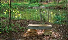 The Meditation Garden | FLORAFOCUS
