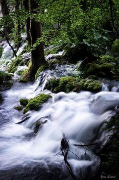 L'eau est source de vie / Water is the source of life | Flickr
