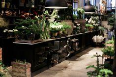 Plant nursery shopping