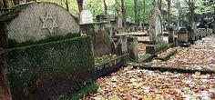 Jewish cemetery, Sopot; fot. Wojtek Jakubowski