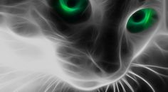 Cat-With-Green-Eyes ....psychic pets?
