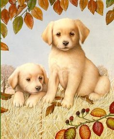 peintres debbie cook - Page 5 Animals And Pets, Cute Animals, Paws And Claws, Kittens And Puppies, Dog Paintings, Puppy Pictures, Illustrations, Cute Illustration, Dog Art