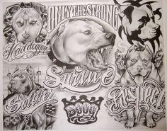 pitbull tattoo sketch - Google'da Ara