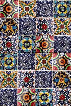 Hadeda Azulejos