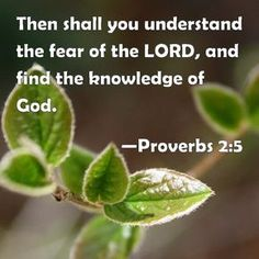 Proverbs 2:5 Then shall you understand the fear of the LORD, and find the knowledge of God.