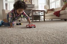 Dogs And Children Will Stain Your Carpet This Way Or The Other