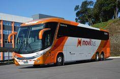 Imagen insertada Lux Bus, Star Bus, Bus City, Bus Games, Express Bus, Engin, Bus Coach, Light Rail, Bus Driver