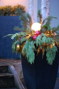 Birch tree branches, variety of greens, pomegranates, glass light ball from goodwill, christmas light string - wala! A thinkg of beauty all in a pot in your entry or back patio!