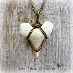 Shark Tooth Fossil Pendant - Antique Bronze Wire Wrapped Necklace