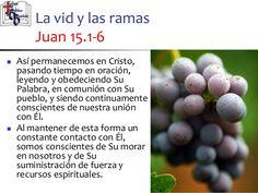 32-jesus-lavidverdadera-estudio-bblico-en-el-evangelio-de-juan-15-638.jpg (638×479)