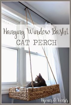 Totally nifty, simple DIY hanging cat bed window perch seat! /doreencagno/ Hymns and Verses