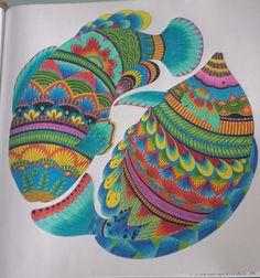 Animal Water AnimalsWoodblock PrintPretty FishPencil ArtJohanna BasfordAdult ColoringColoring BooksAnimal KingdomColored Pencils