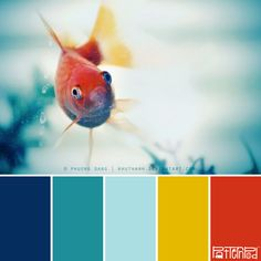 Swimmingly Bright #patternpod #patternpodcolor #color
