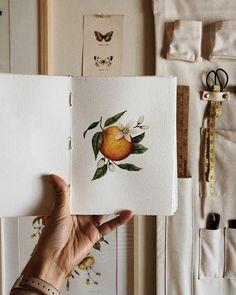 Watercolor Sketchbook, Pastel Watercolor, Watercolor Artists, Watercolor Paintings, Floral Paintings, Botanical Illustration, Watercolor Illustration, Painting Process, Orange Blossom