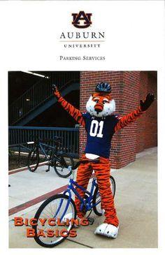 Auburn University's Parking Services presents Bicycling Basics: http://en.calameo.com/read/003969942ec405327d4a7