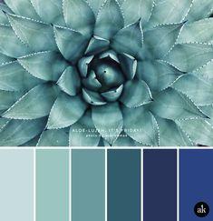 New house paint interior blue bathroom colors ideas Color Schemes Colour Palettes, Green Colour Palette, Bedroom Color Schemes, Paint Schemes, Grey Palette, Basement Color Schemes, Beach Color Schemes, Office Color Schemes, Basement Colors