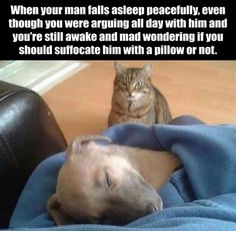 Friday Funny images (11:49:33 AM, Friday 30, September 2016 PDT) – 17 pics