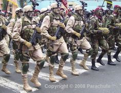 peruvian military forces | Peruvian Armed Forces - Page 91