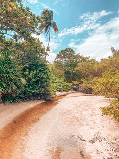 Boipeba - Brasil Country Roads, Photo And Video, Beautiful, Beach, Water, Wallpapers, Outdoor, Instagram, Brazil