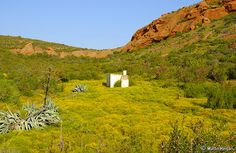 """""""A Simpler Life."""" Photographed just outside Calitzdorp in the Little Karoo, Western Cape, South Africa, 29 September By Martin Heigan Sa Tourism, Provinces Of South Africa, South African Artists, The Beautiful Country, Countries Of The World, Live, Perfect Place, Countryside, Monument Valley"""