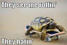 Always hatin'!